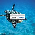 Save WWF